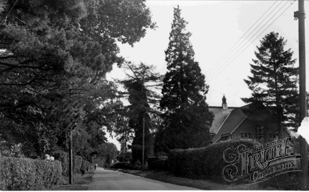 Crawley Down, Sandy Lane c1955.